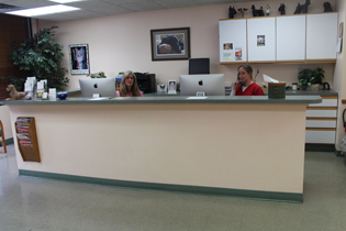 Pet and Animal Eye Doctor and Eye Care Center